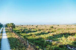 Fort Drum Marsh Conservation Area