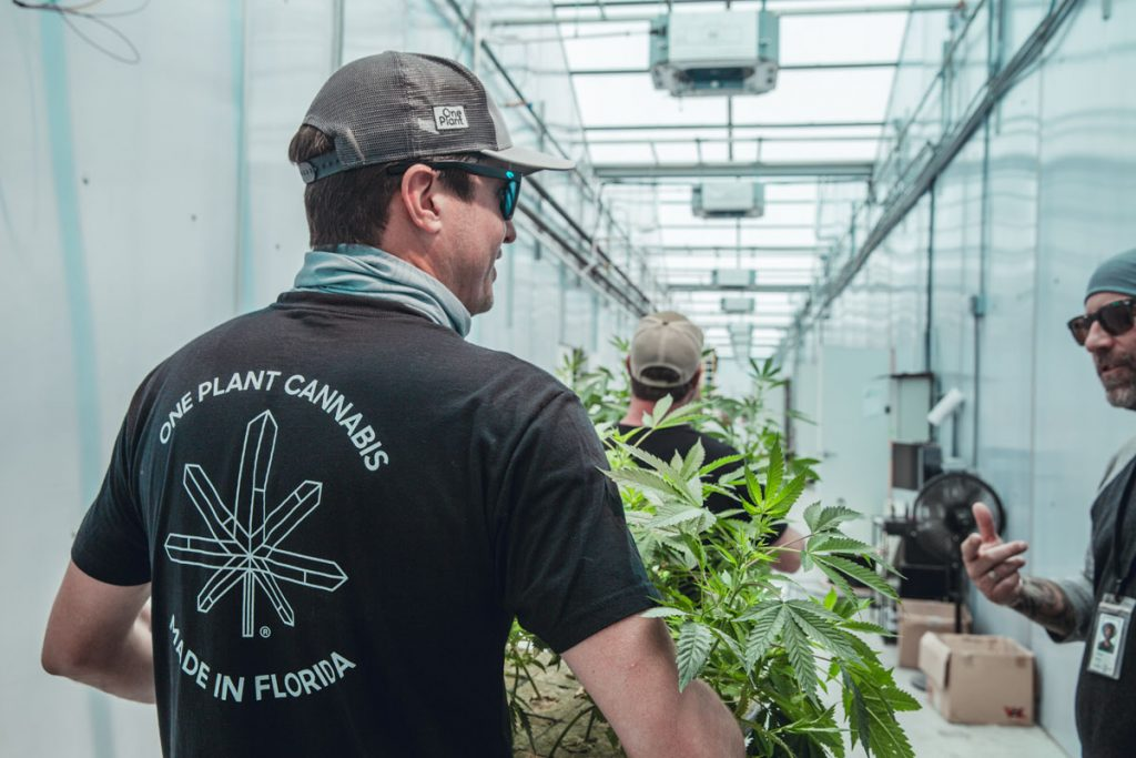 """Cobb calls his One Plant greenhouse staff a """"dream team of cannabis cultivators and purists."""" One Plant photos by Shaun Cruz"""