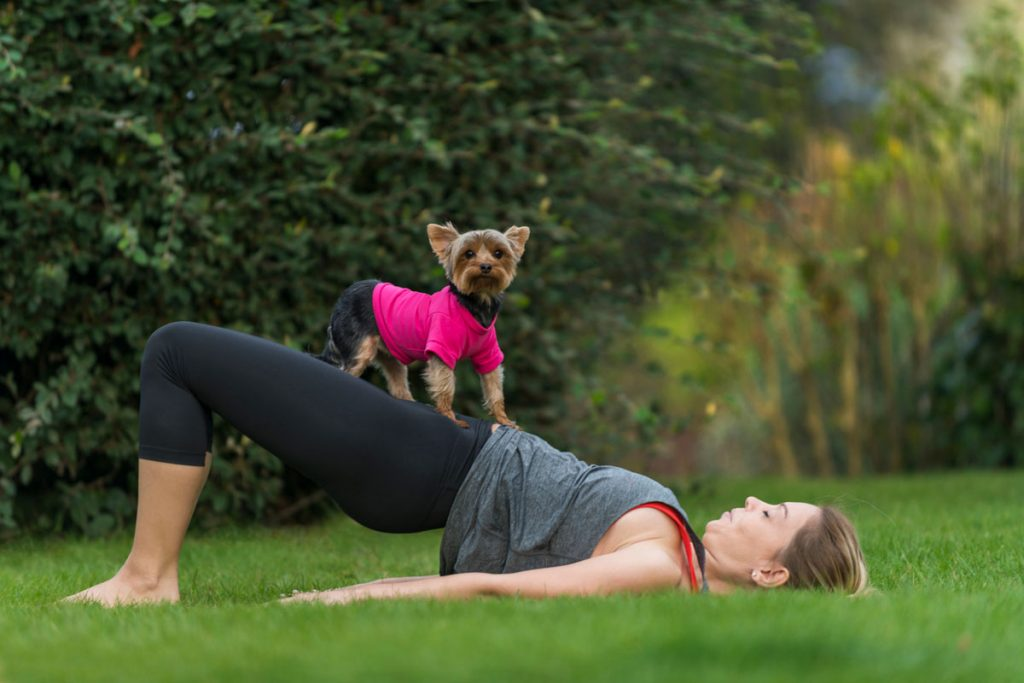 Take a yoga class with your dog