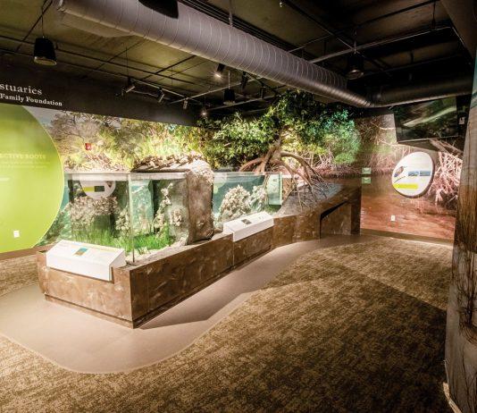 Florida Oceanographic Center EcoCenter in Hutchinson Island